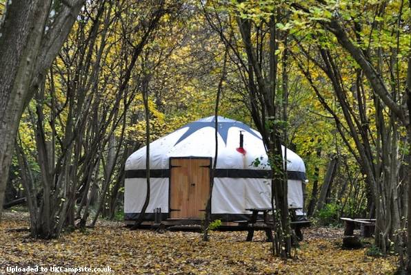 Free glamping, Sussex